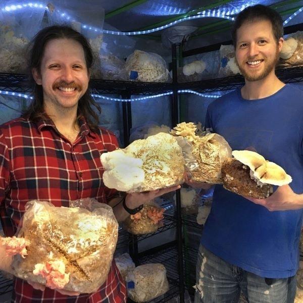 Mushroom Queens