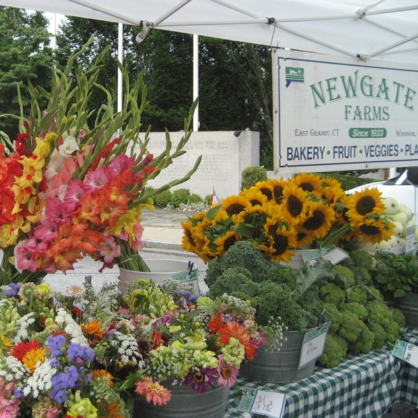 Newgate Farms